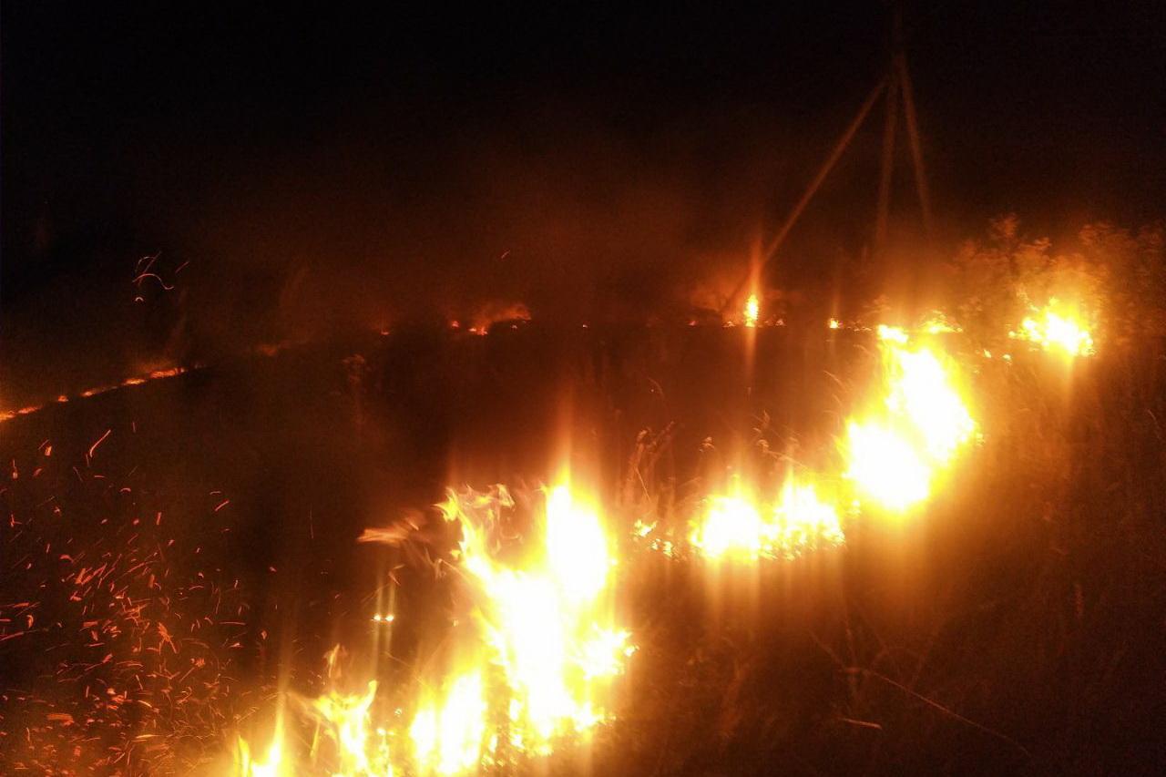 Накануне похолодания по экосистемам области успела пройтись новая волна пожаров
