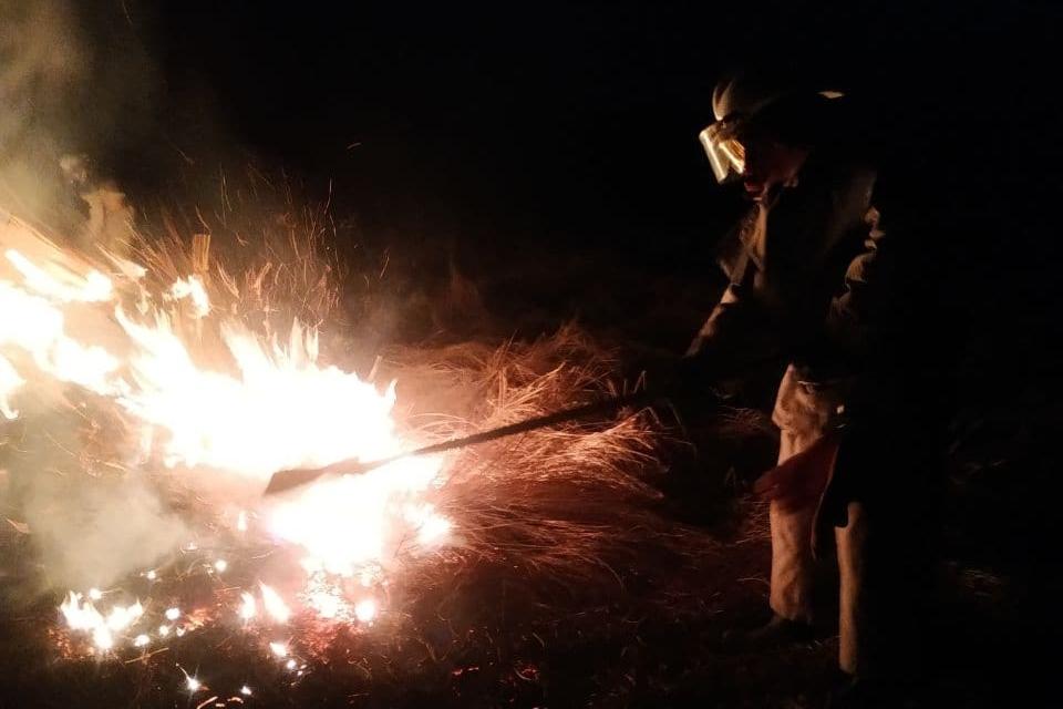 Из-за сжигания сухостоя на Харьковщине выгорели десятки гектаров экосистем, есть погибшая