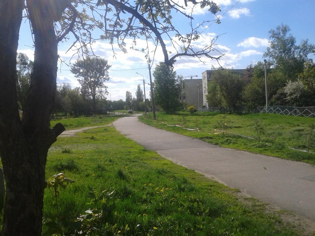 Уже 500 деревьев высажены волонтерскими силами в салтовских дворах